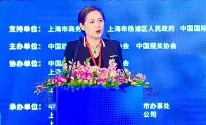 中国欧洲经济技术合作协会常务副会长兼秘书长陈景玥致辞.jpg